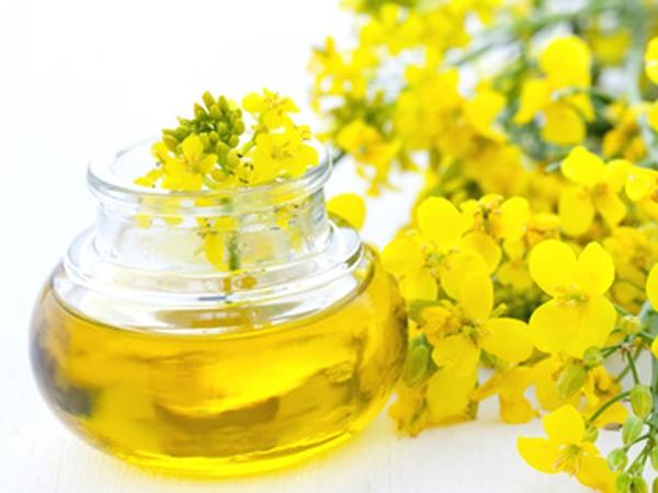 huile colza ou canola